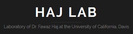 Haj Lab